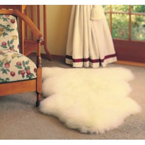 Sheep Skin Rug - Single (Champagne)